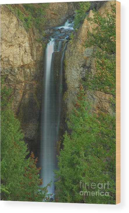 Waterfall Wood Print featuring the photograph Tower Falls by Dennis Hammer