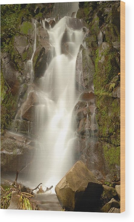 Landscape Wood Print featuring the photograph El Salto by Iris Greenwell