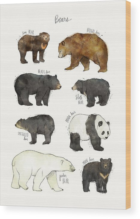 Bear Wood Print featuring the drawing Bears by Amy Hamilton