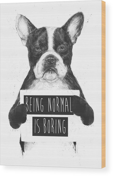 Bulldog Wood Print featuring the drawing Being normal is boring by Balazs Solti