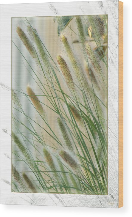 Floral Wood Print featuring the photograph Breeze by Holly Kempe