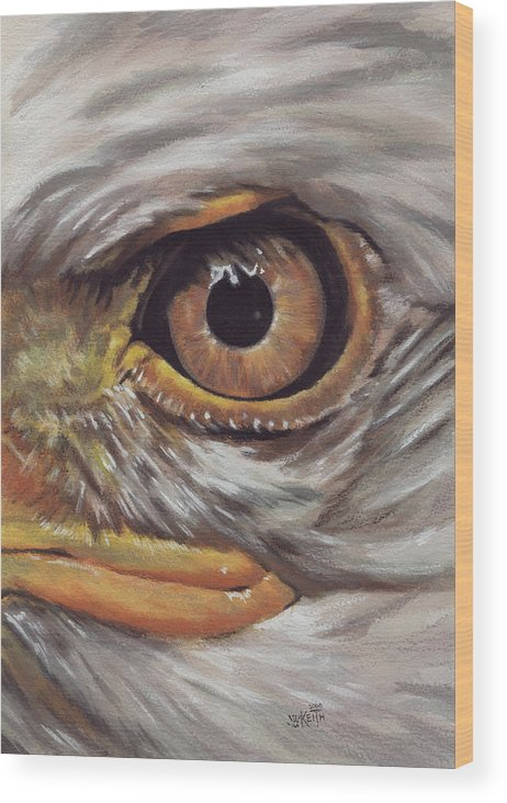 Eagle Wood Print featuring the painting Bald Eagle Gaze by Barbara Keith
