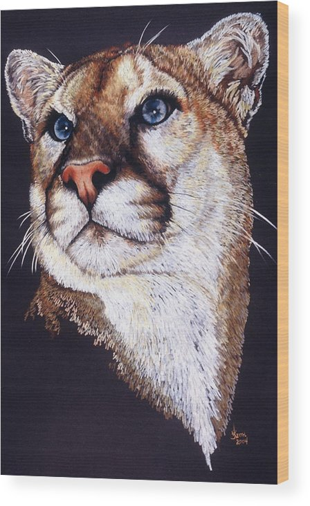 Cougar Wood Print featuring the drawing Intense by Barbara Keith