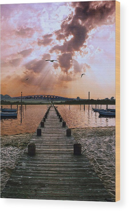 Seascape Wood Print featuring the photograph Seaside by Steve Karol