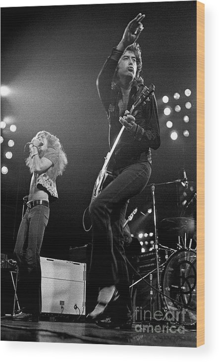 Robert Plant Wood Print featuring the photograph Zeppelin Rocks by Pd