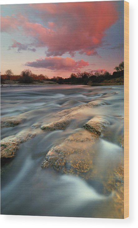 Scenics Wood Print featuring the photograph American River Parkway At Sunset by David Kiene