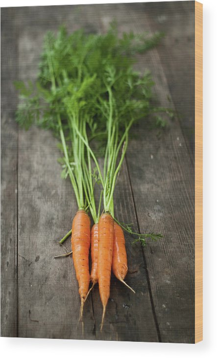 Bulgaria Wood Print featuring the photograph Carrot by Kemi H Photography