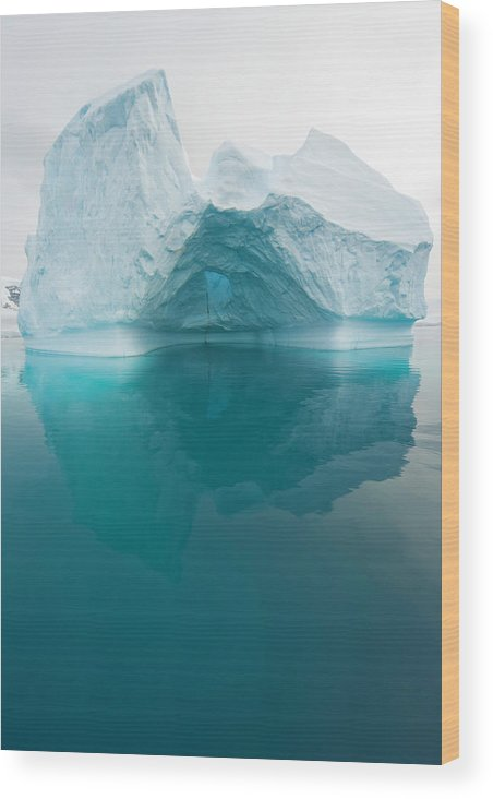 Iceberg Wood Print featuring the photograph Iceberg And Reflections, Antarctic by Eastcott Momatiuk