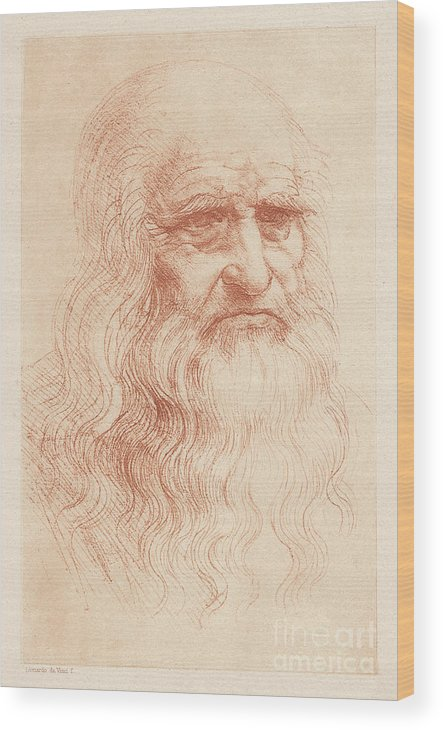 Painter Wood Print featuring the digital art Leonardo Da Vinci 1452-1519, Italian by Zu 09