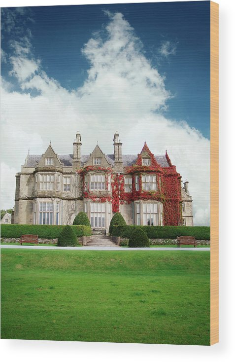 Grass Wood Print featuring the photograph Muckross House by Narvikk