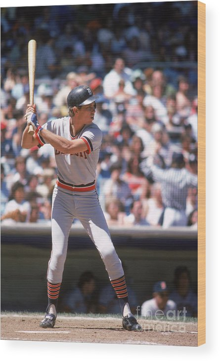 American League Baseball Wood Print featuring the photograph Alan Trammell by Rich Pilling