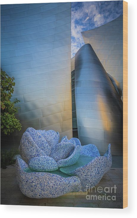America Wood Print featuring the photograph Blue Ribbon Garden Reflection by Inge Johnsson