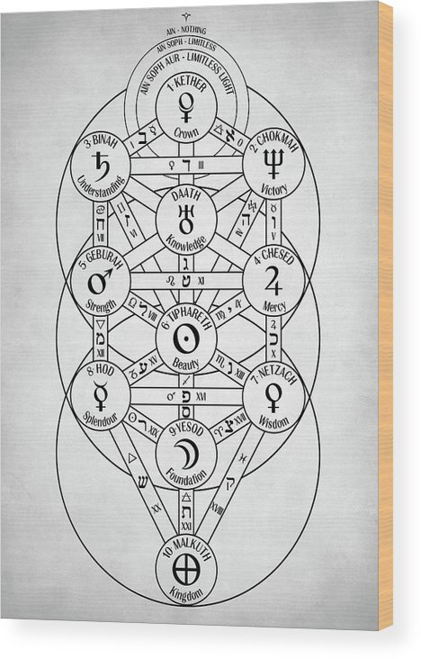 Kabbalah Tree Of Life : In transformational kabbalah the tree of life is used as a pragmatic tool for seeing how and why things, people, and events manifest in your life the sefirot of the tree of life.