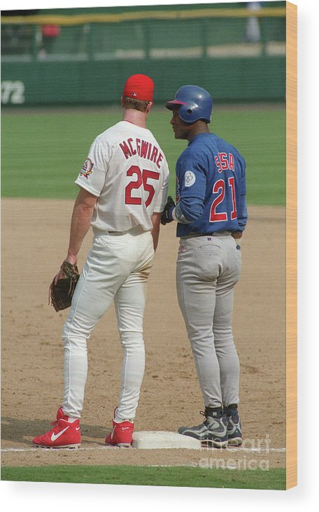 St. Louis Cardinals Wood Print featuring the photograph Sammy Sosa and Mark Mcgwire by Icon Sports Wire