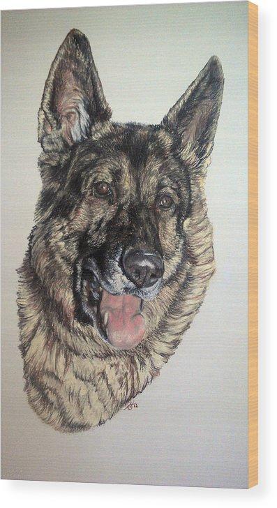 German Shepherd Wood Print featuring the pastel German Shepherd Rudi by Ann Marie Chaffin