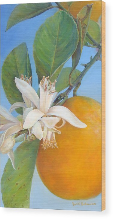 Floral Painting Wood Print featuring the painting Fleurs d oranges by Muriel Dolemieux