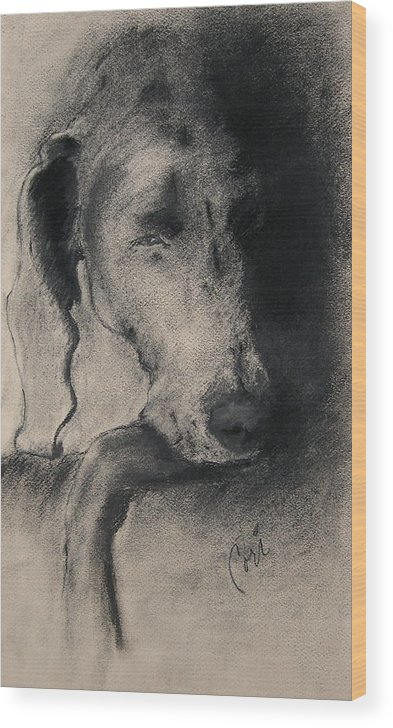 Weimaraner Wood Print featuring the drawing Silhouette by Cori Solomon