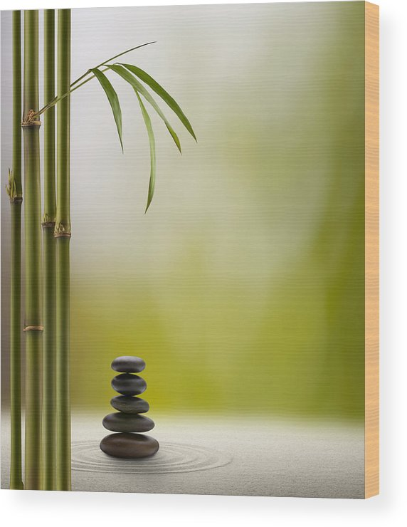 Bamboo Wood Print featuring the photograph Feng Shui Bliss by Pixhook