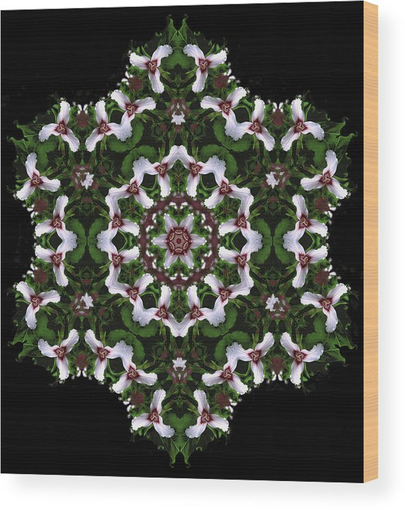 Mandala Wood Print featuring the digital art Mandala Trillium Holiday by Nancy Griswold