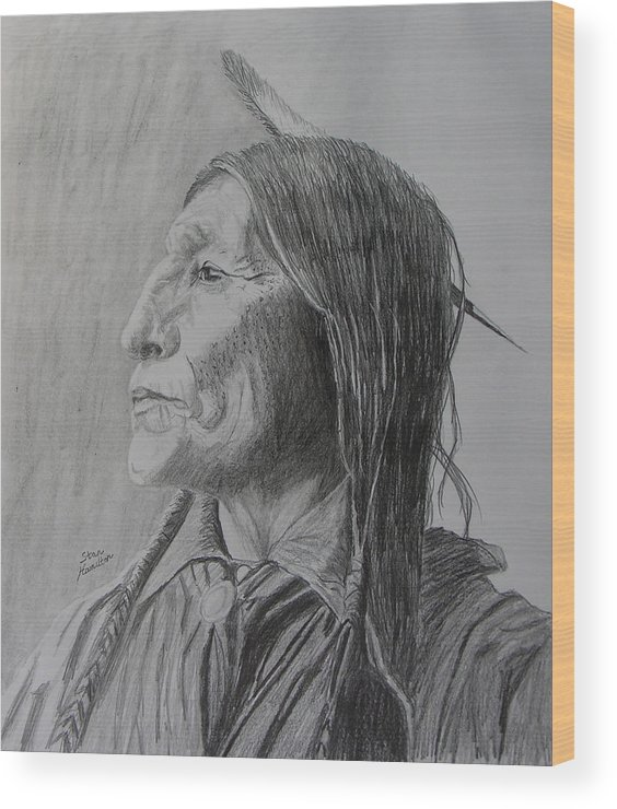 Indian Wood Print featuring the drawing Chief Wolf Robe by Stan Hamilton