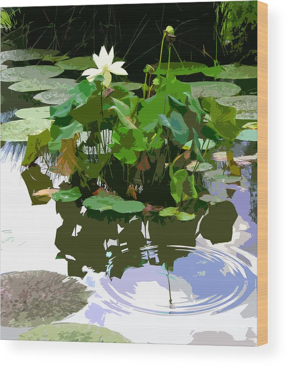 Lotus Wood Print featuring the photograph Ripples on the Lotus Pond by John Lautermilch