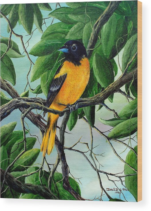 Oriole Wood Print featuring the painting Northern Oriole by David G Paul