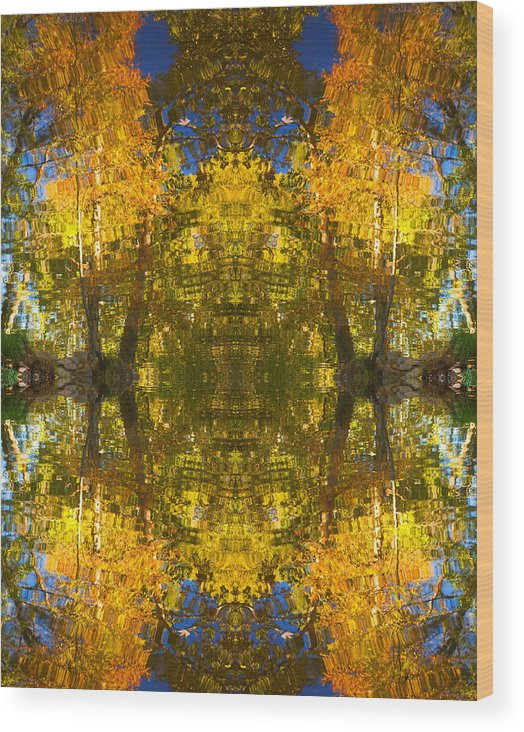 Abstract Wood Print featuring the photograph Reflections Trees And Water by Bob Coates