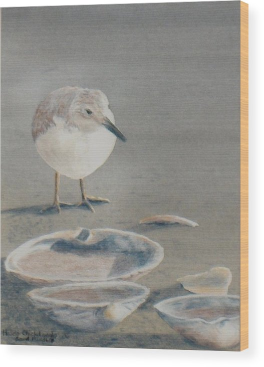 Sandpiper Wood Print featuring the painting Sand Puddles by Haldy Gifford
