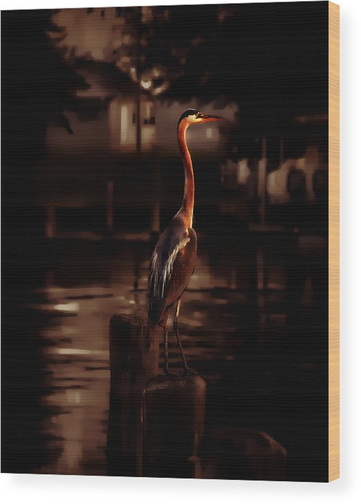 Birds Wood Print featuring the photograph Standing Tall by Toby Horton