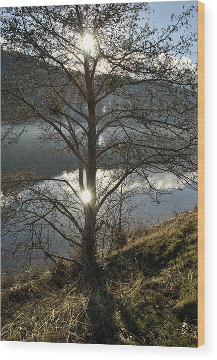Landscape Wood Print featuring the photograph Double Sun by Randal Bruck
