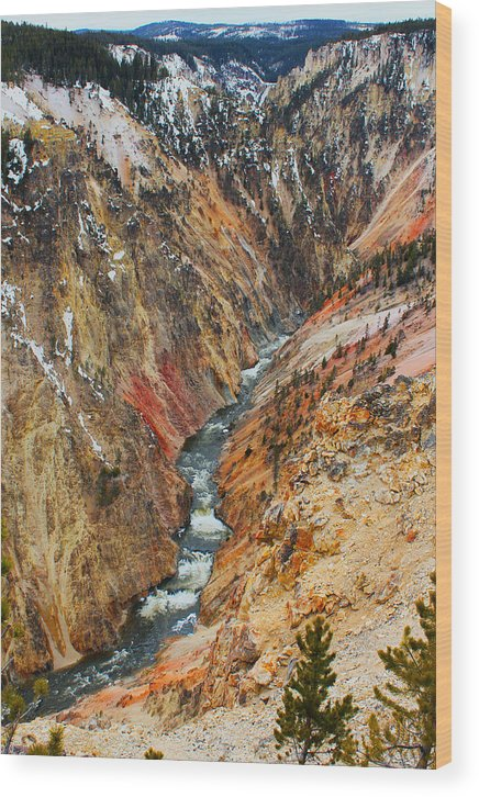 Grand Canyon Wood Print featuring the photograph Grand Canyon Yellowstone by Jolie Chantharath