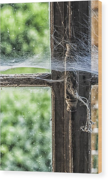 Worn Window Wood Print featuring the photograph Window Lock And Spider's Web by Georgia Fowler