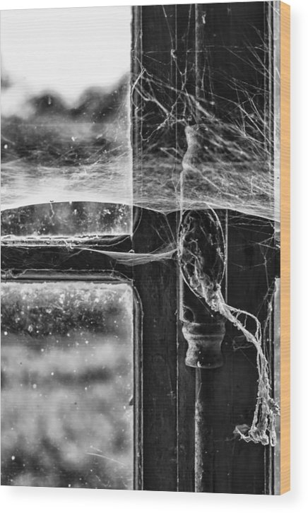 Cobwebs Wood Print featuring the photograph Window Spiders Web by Georgia Fowler