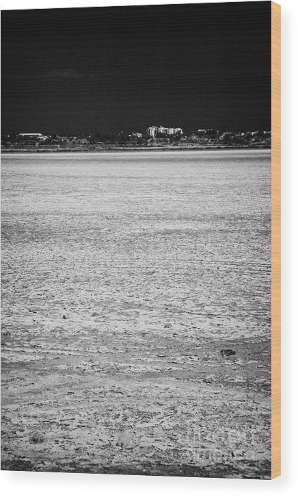 Larnaca Wood Print featuring the photograph Larnaca Salt Flats In The Larnaka Salt Lake Republic Of Cyprus Europe by Joe Fox
