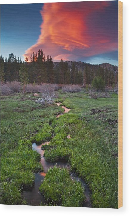Eastern Sierra Wood Print featuring the photograph Lenticular Meadow by Nolan Nitschke