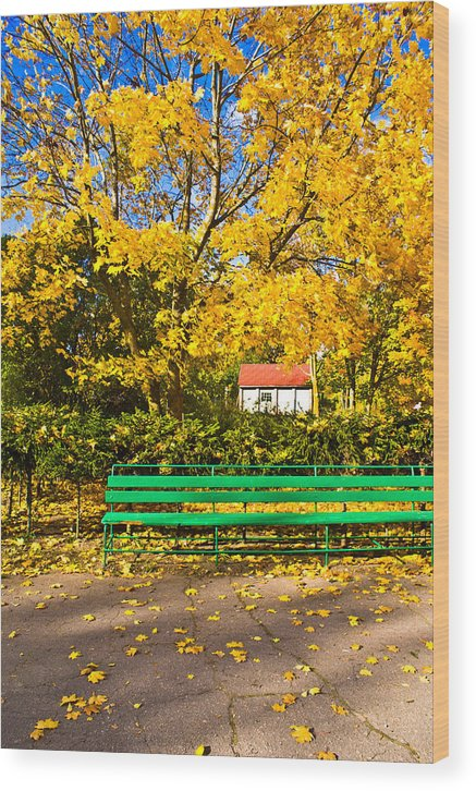 Autumn Wood Print featuring the photograph Untitled by Vadim Grabbe