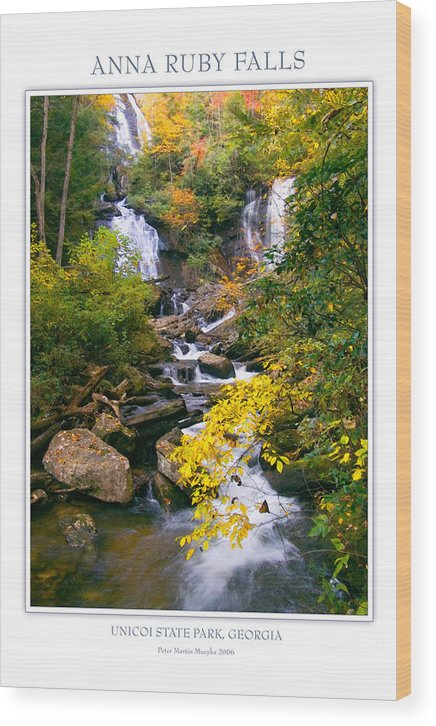 Landscape Wood Print featuring the photograph Anna Ruby Falls by Peter Muzyka