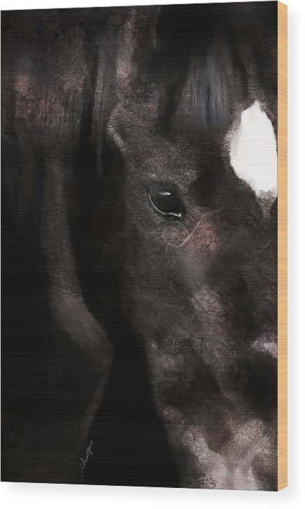 Horse Wood Print featuring the digital art Horse Study #6 by Everlasting Equine Horse Art