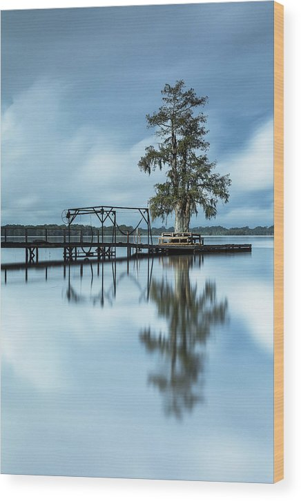 Louisiana Wood Print featuring the photograph Introspection by Noel Marcantel