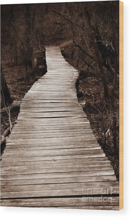 Path Wood Print featuring the photograph Path To Nowhere by Jeannie Burleson
