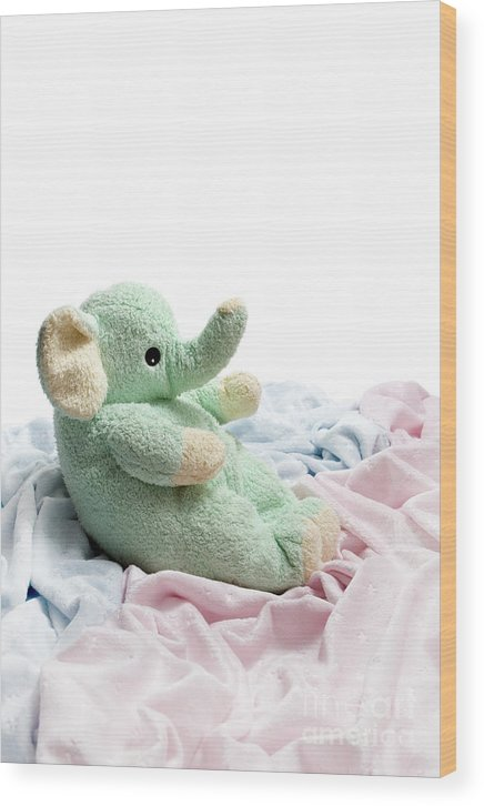 Soft Wood Print featuring the photograph Soft And Cuddly by Jeannie Burleson