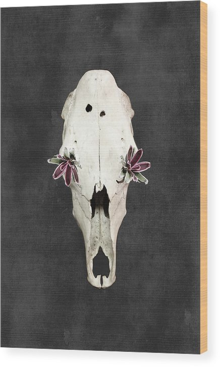 Flowers Wood Print featuring the photograph Succulent Flowers And Horse Skull by Di Kerpan