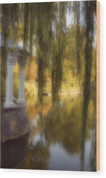 Water Wood Print featuring the photograph The Gazebo by Ayesha Lakes