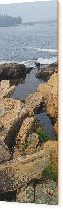 Landscape Wood Print featuring the photograph Scoodic Tidepool by Peter Muzyka