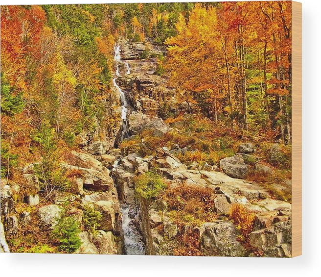Waterfall Wood Print featuring the photograph 1890 Silver Cascades by Naturally NH