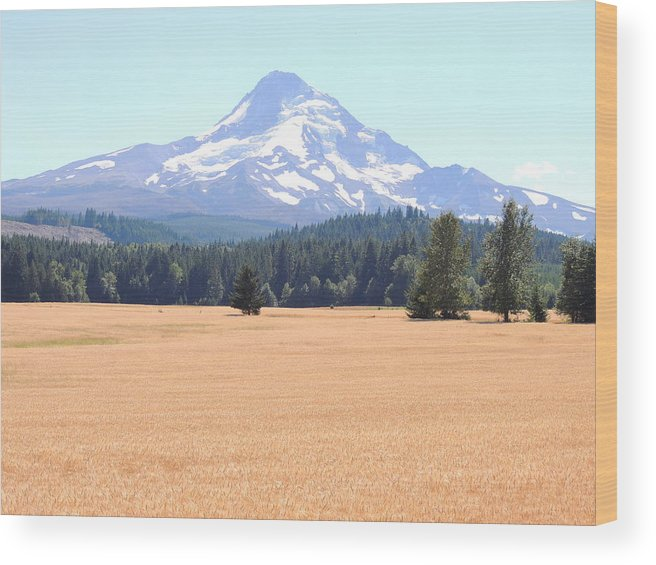 Nature Wood Print featuring the photograph Mount Hood by Lucy Howard