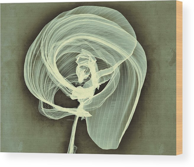 Digital Wood Print featuring the painting A Smooth Awakening by Guillermo De Llera