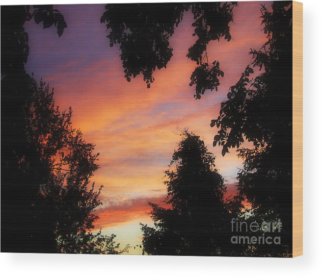 Skyscape Wood Print featuring the photograph Ams 186a by Scott B Bennett