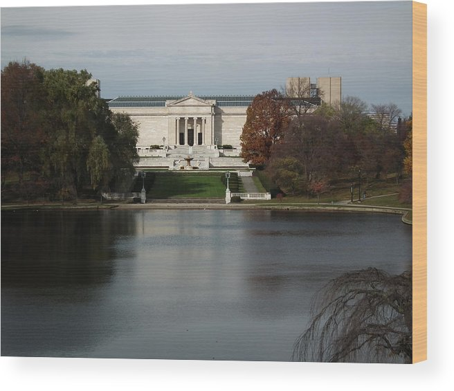 Art Museum In Cleveland Ohio Wood Print featuring the photograph Art At A Distance by Sharon Sammon