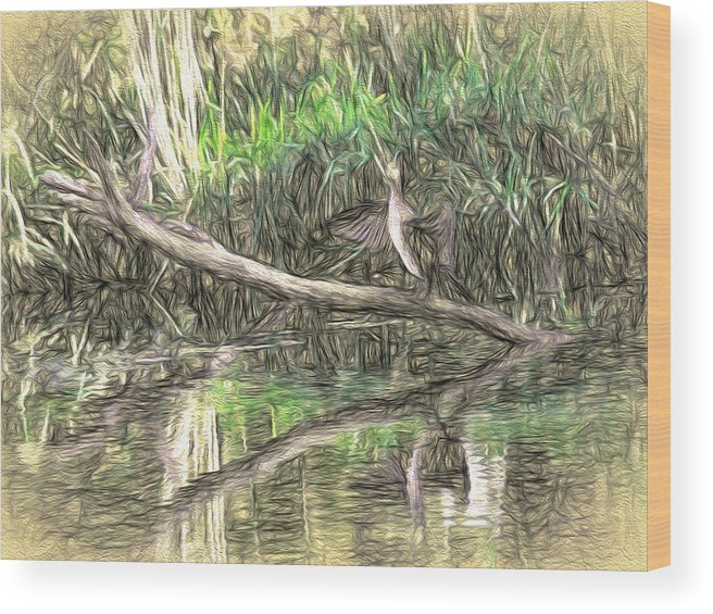 Artistic Wood Print featuring the photograph Artistic Drying Cormorant- Black Bird Sitting On Log Over Water by Leif Sohlman
